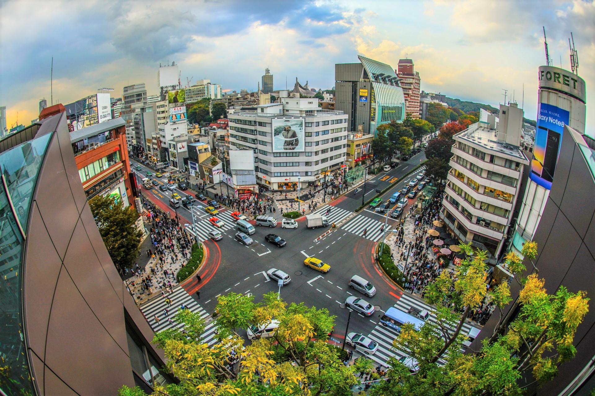 HARAJUKU and OMOTESANDO Shopping Guide