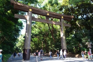 Meiji Shrine: Most Popular Landmark in Harajuku