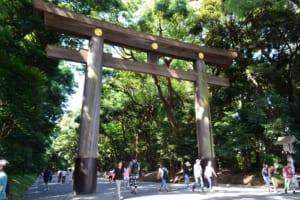 Meiji Shrine: Most Popular Landmark inHarajuku
