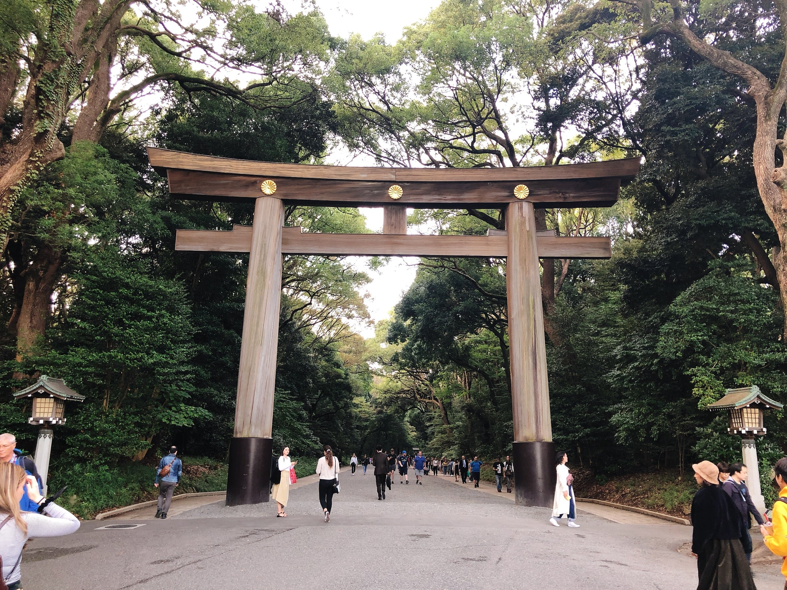 The torii gate of Meiji Shrine
