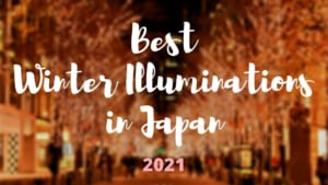 10 Winter Illuminations in Japan You Can still Enjoy after New Year
