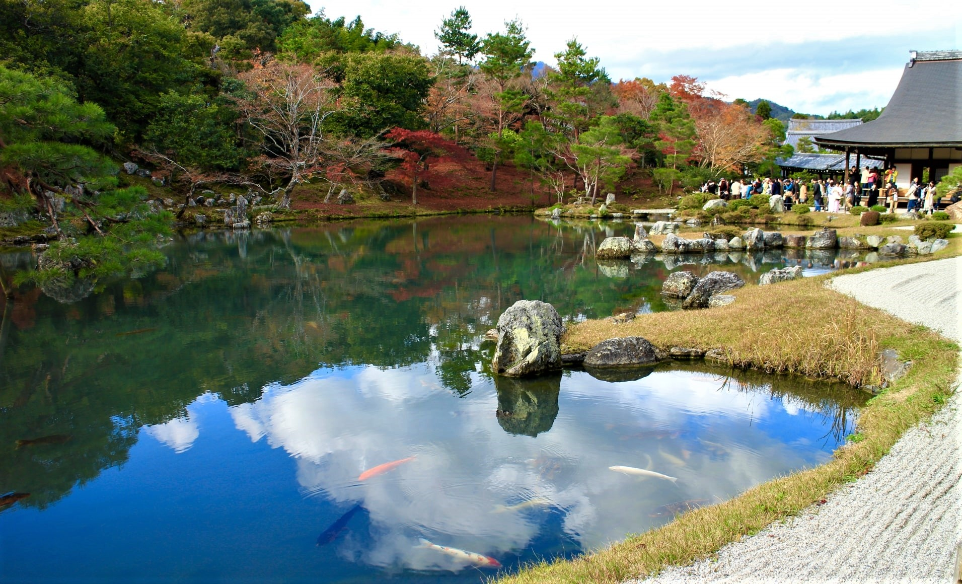 The landscape garden with pond at Tenryuji Temple