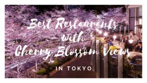 10 Best Cherry Blossom Viewing Restaurants in Tokyo