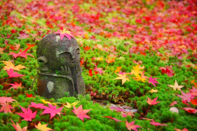 Autumn in Japan: 10 Best Things to Do in 2021