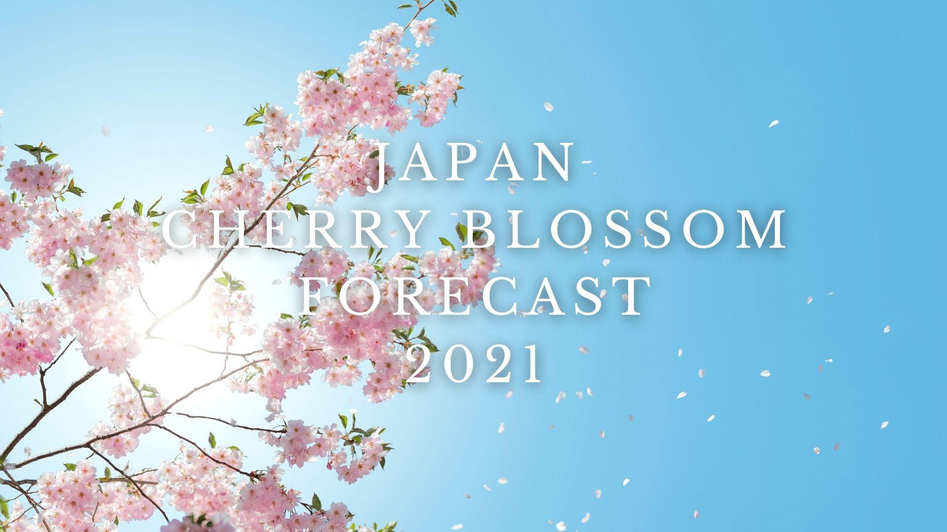 Japan Cherry Blossom Forecast 2021