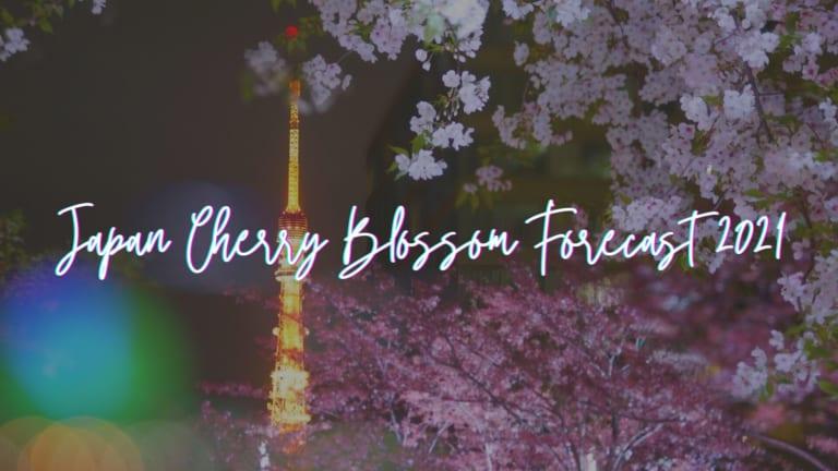 cherry blossom forecast 2021 temp