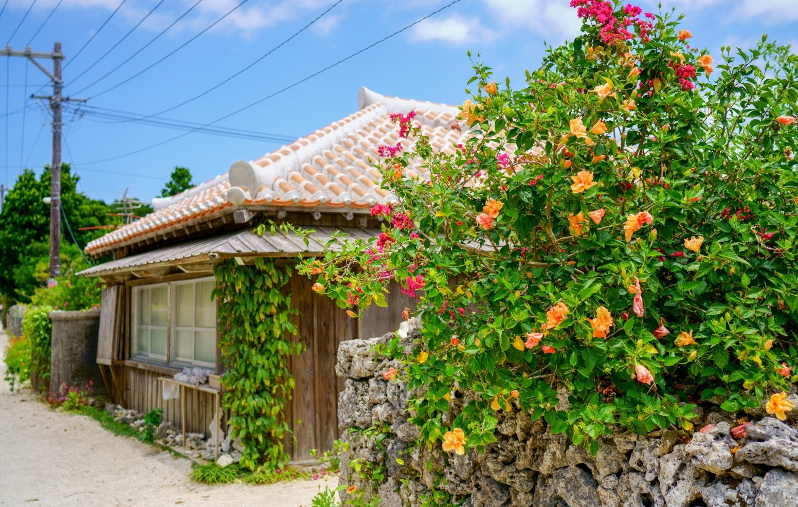 An attractive traditional house in Taketomi Island