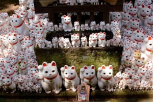 Gotokuji Temple: The Cat Temple in Tokyo