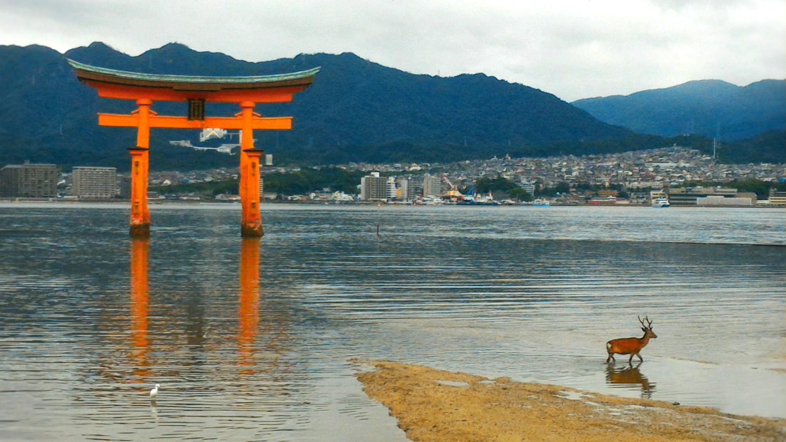 Miyajima Island Hiroshima : Best Things to Do in 2020