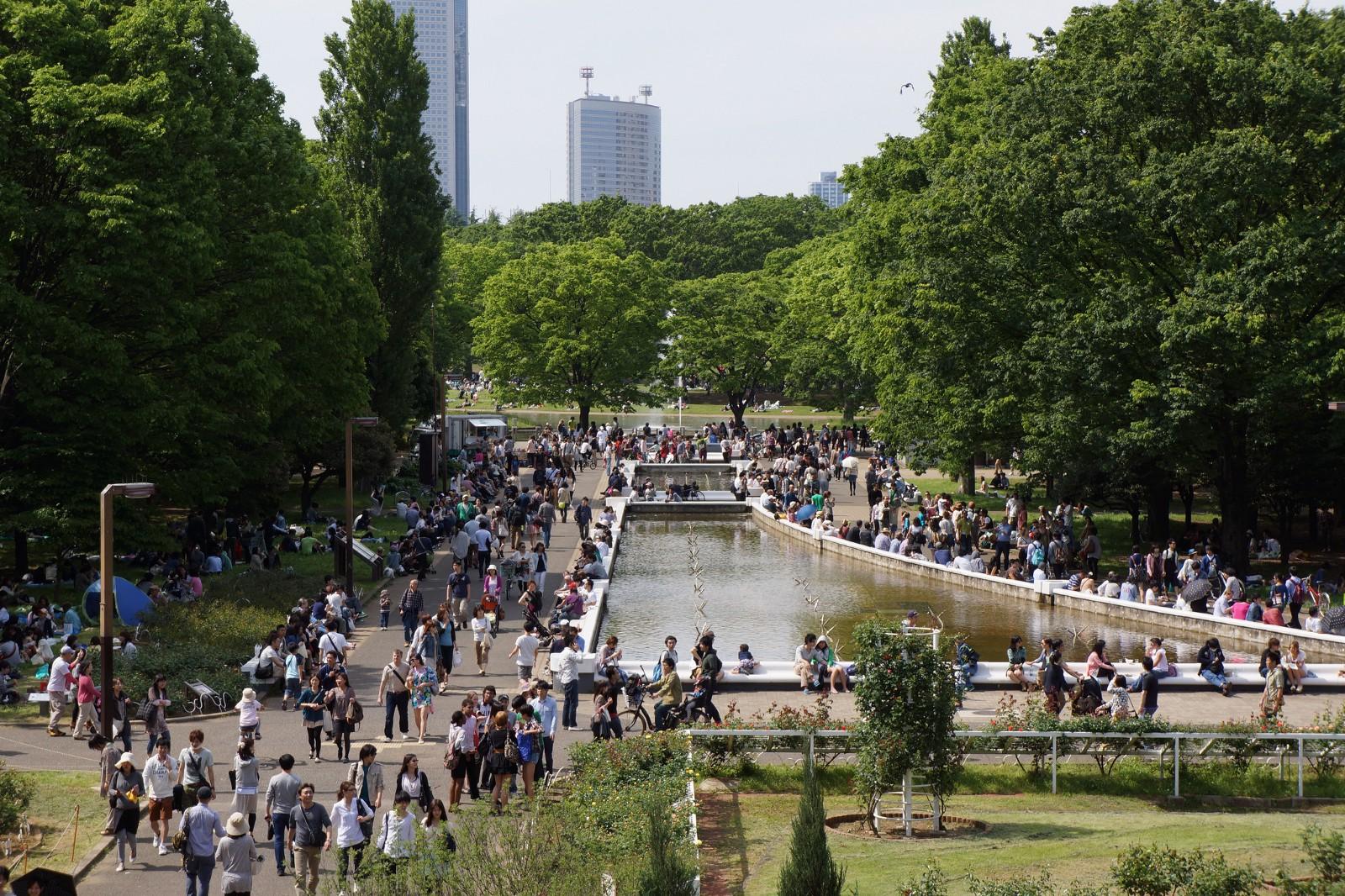 Yoyogi Park: Enjoy the Beautiful Nature in Tokyo!