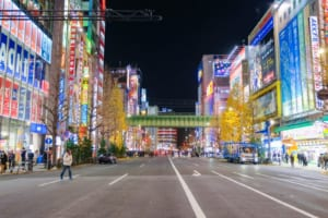 Akihabara Food Guide: What to Eat in Akihabara
