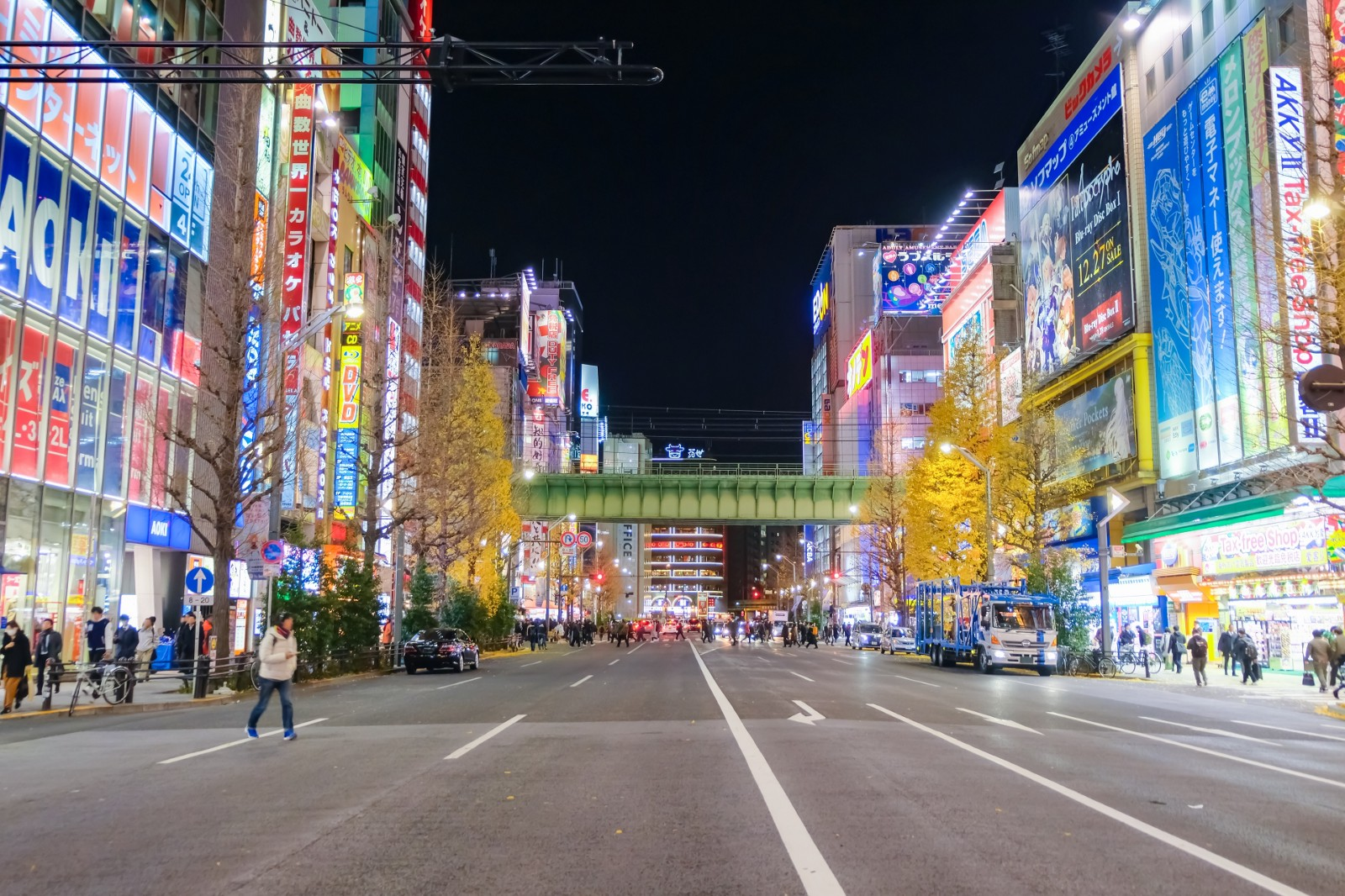 Akihabara Food Guide: What to Eat in Akihabara 2019