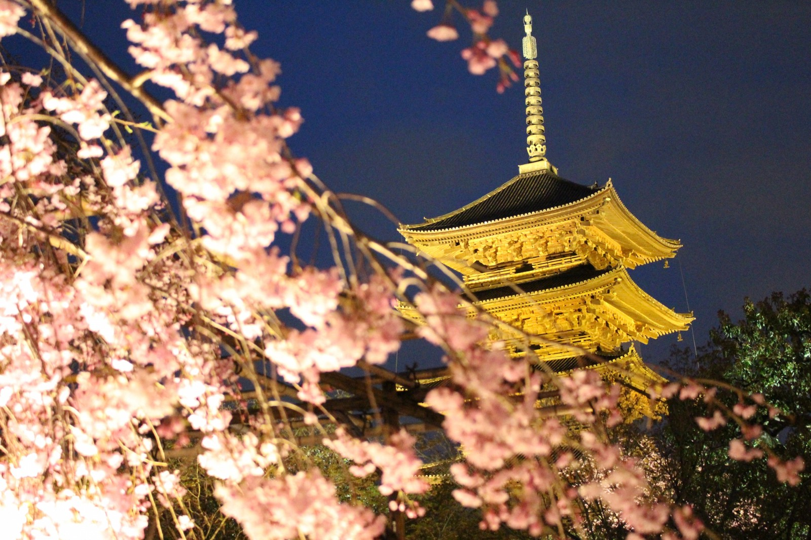 13 Best Places to See Cherry Blossoms in Kyoto 2020
