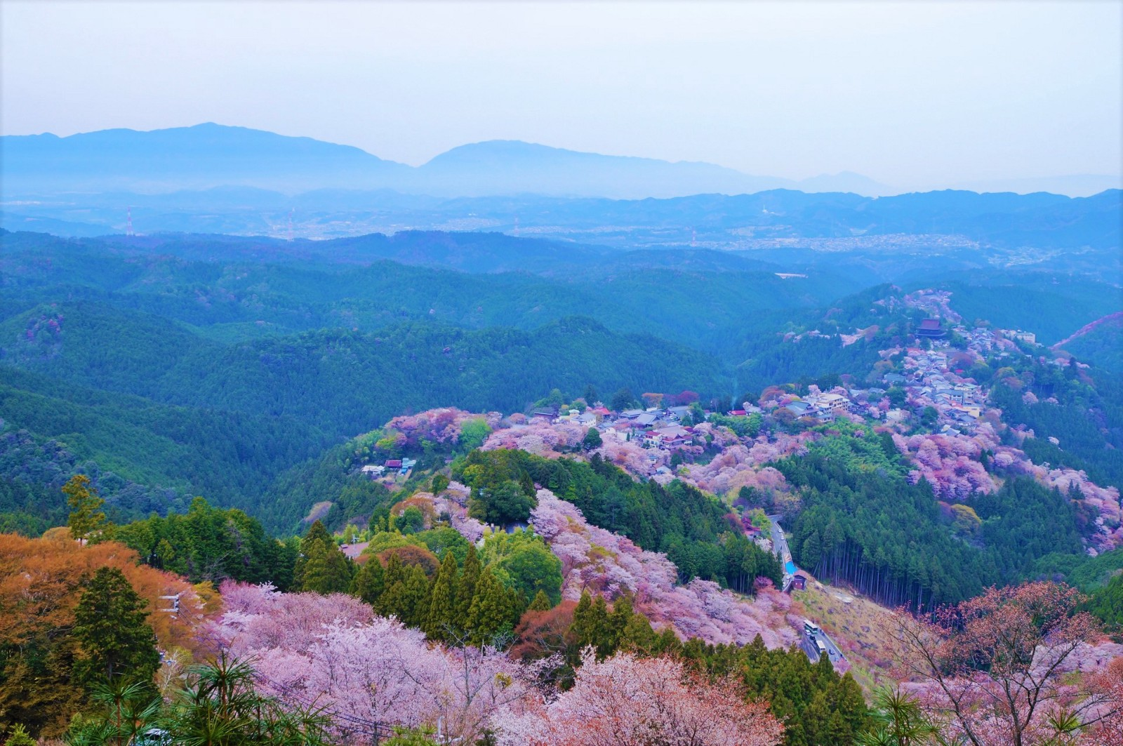 10 Best Places to Visit in Japan in Spring 2020