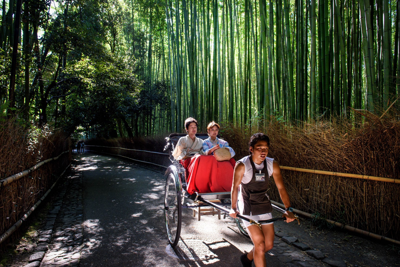 Kyoto Tours and Activities: 15 Best Things to Do 2020
