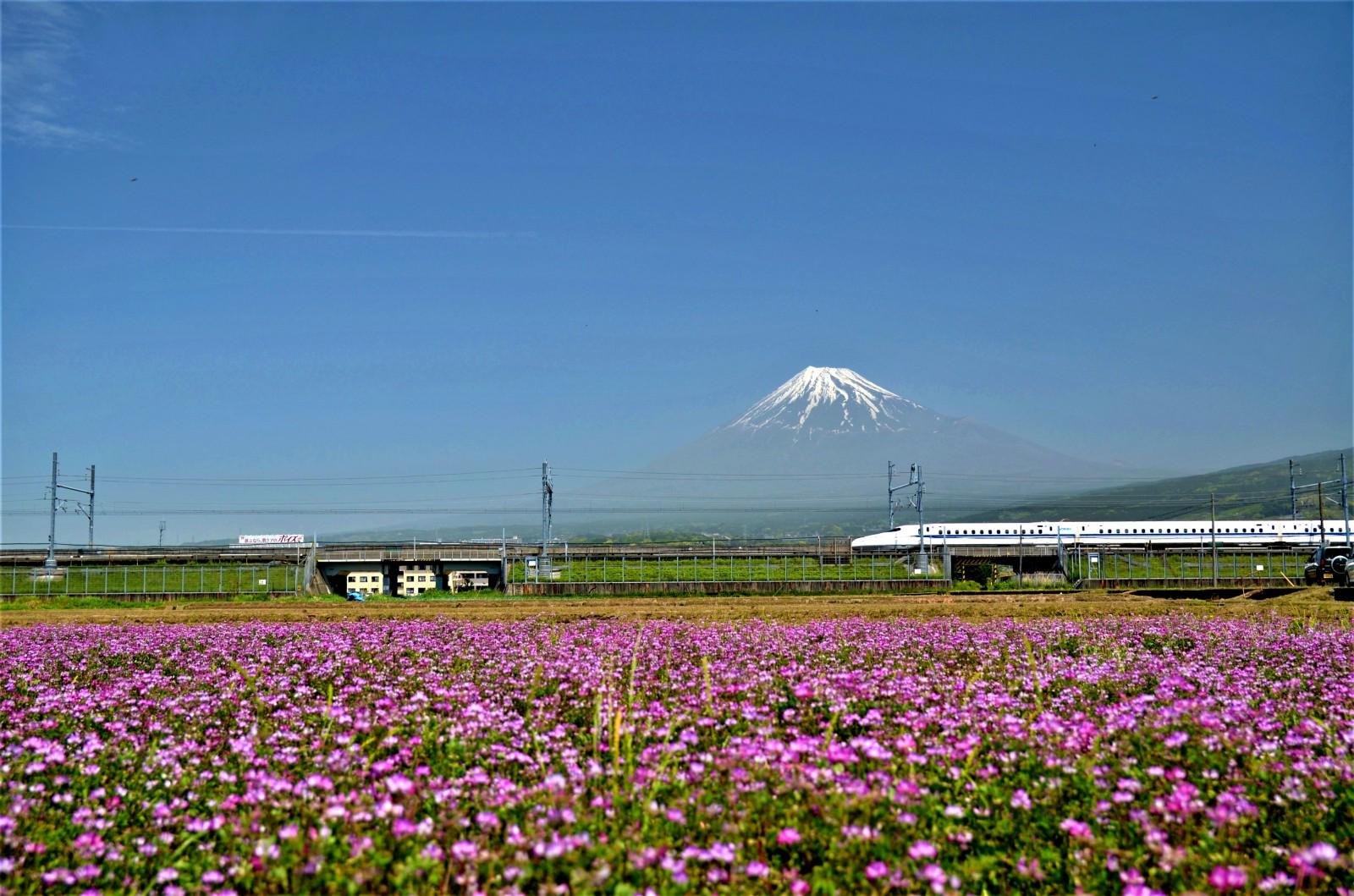 My Secret Spots to Photograph Mt.Fuji!!