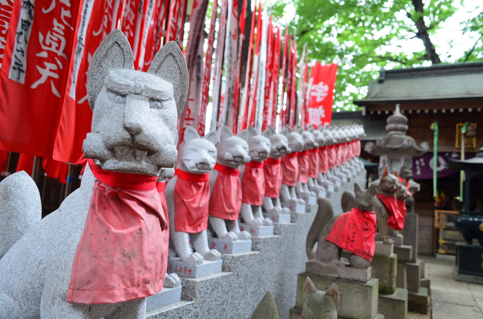 Unique and photo-worthy shrine with fox statues