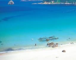 7 Best Beaches in Izu Peninsula