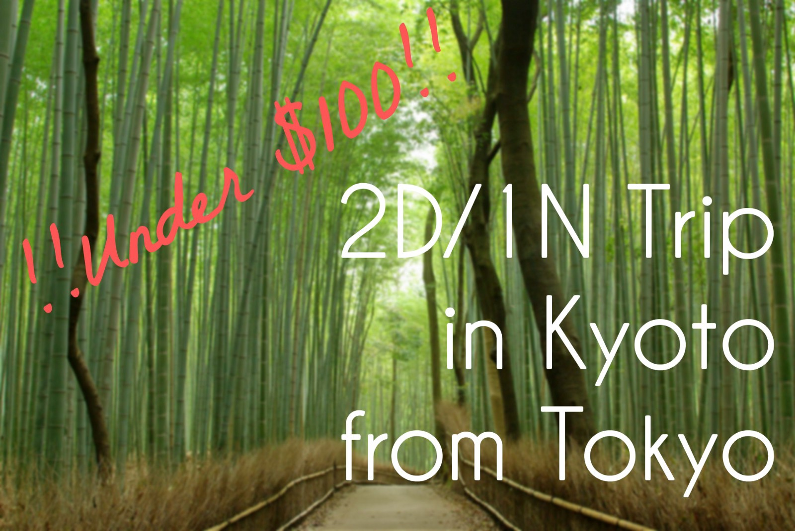 Tokyo to Kyoto : the Cheapest Way to Travel