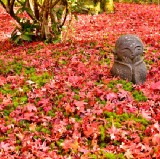 10 Best Things to Do in Japan in Autumn