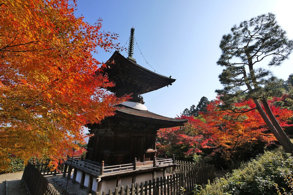 Jojakkoji Temple: Hidden Beautiful Hideaway in Kyoto