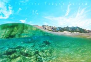 Ogasawara Islands: 6 Days Trip to Chichijima Island