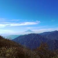 Mt. Oyama: Hike on the Sacred Mountain in Kanagawa!