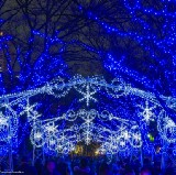 Best Winter Illumination Spots in Osaka 2019