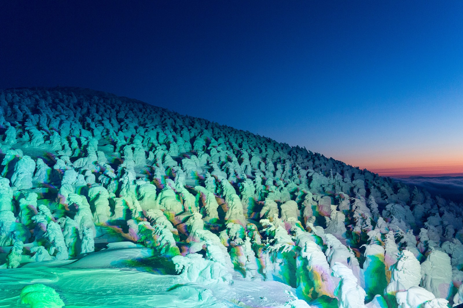 Illuminated snow monsters in Zao