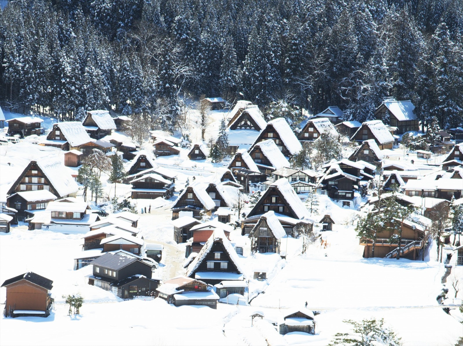 The picturesque scenery of SHirakawago Village in winter