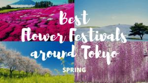 10 Must-Visit Flower Festivals around Tokyo Spring!