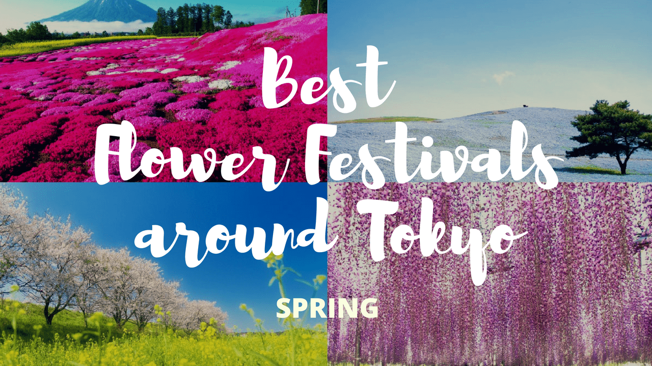 10 Must-Visit Flower Festivals around Tokyo in 2020 Spring!
