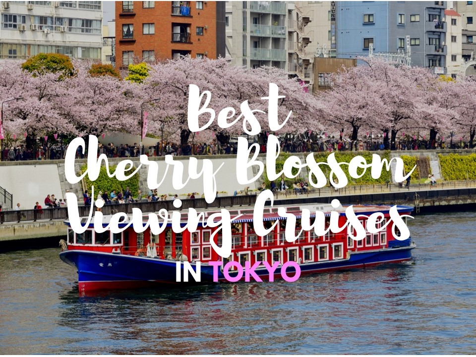 6 Best Cherry Blossom Viewing Cruises in Tokyo 2020