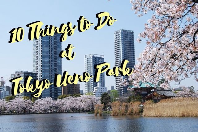 Ueno Park: 10 Best Things to Do in 2019