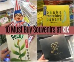 What to Buy at Kansai International Airport 2019