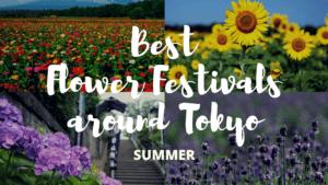 7 Must-Visit Flower Festivals around Tokyo Summer!