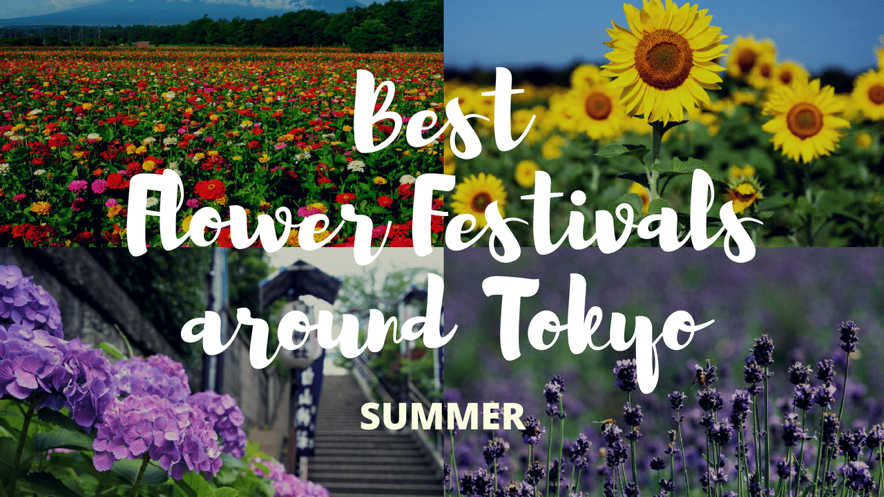 7 Must-Visit Flower Festivals around Tokyo in Summer!