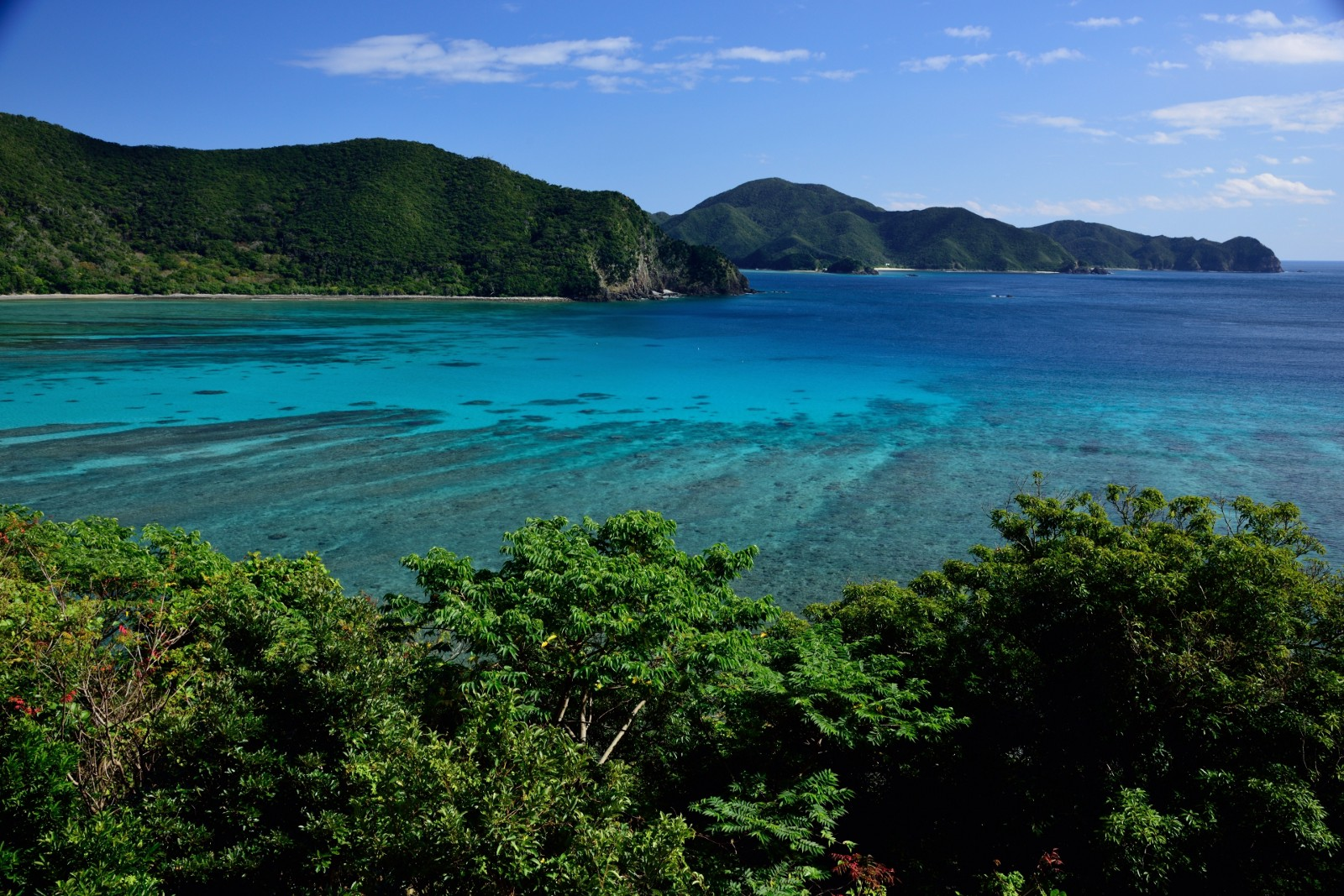 Amami Oshima's beautiful ocean and rich nature