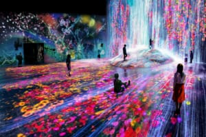 MORI Building DIGITAL ART MUSEUM: EPSON teamLab Borderless-Odaiba, Tokyo