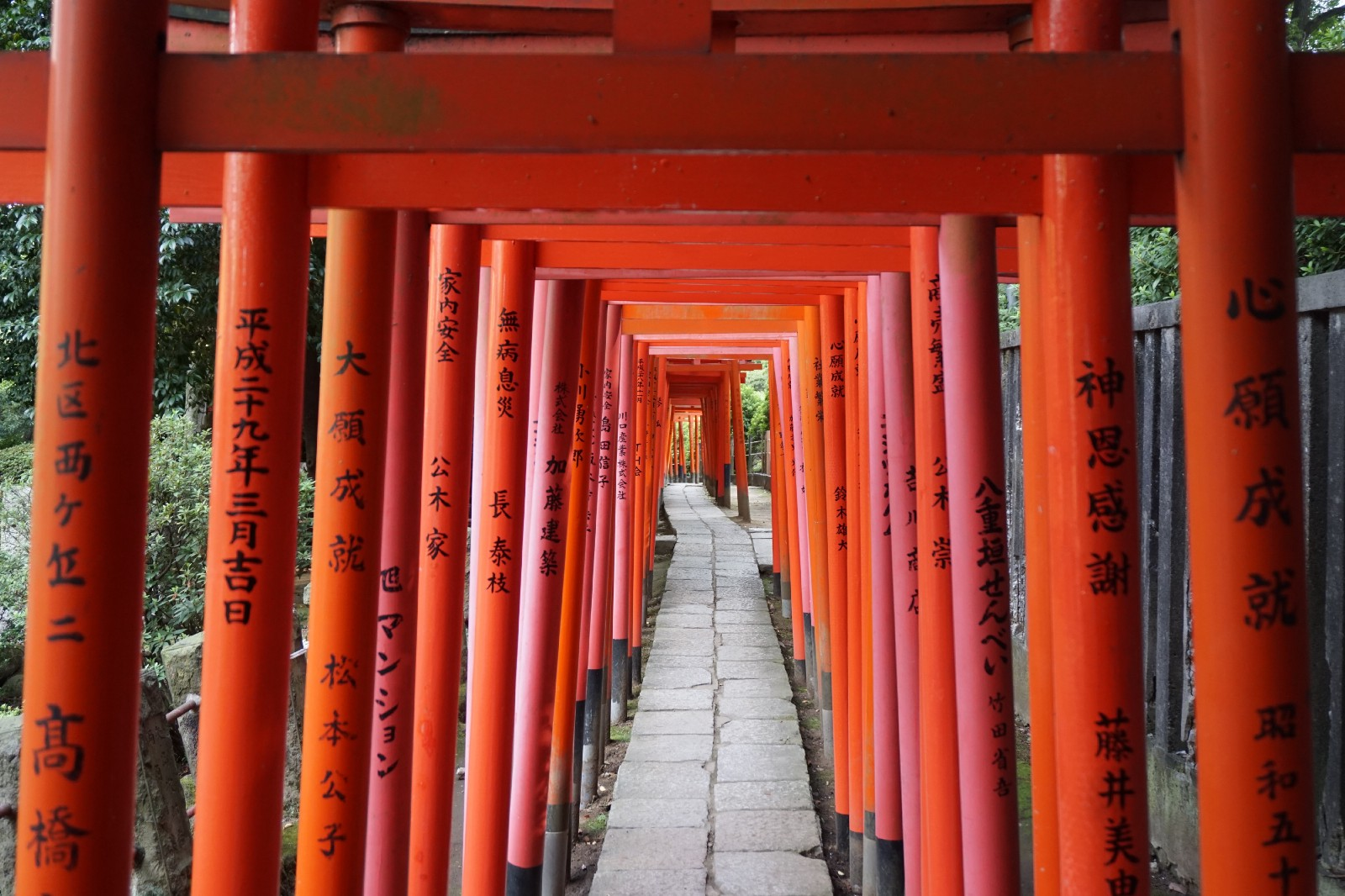 Nezu Shrine's iconic vermilion torii gates