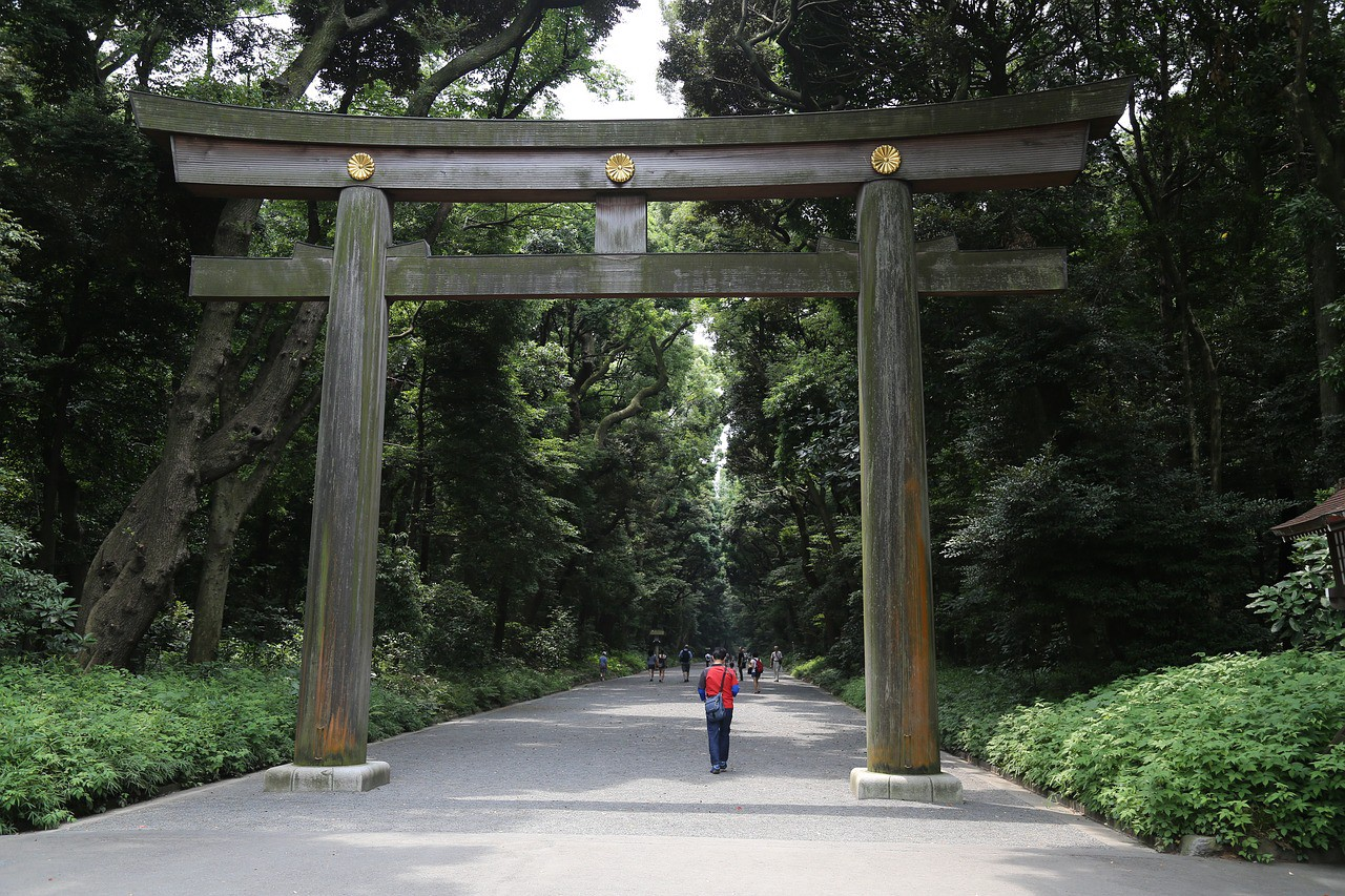 The magnificent wooden torii gate in Meiji Shrine