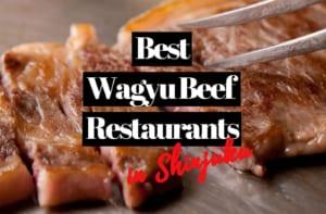 6 Best Wagyu Beef Restaurants in Shinjuku Tokyo