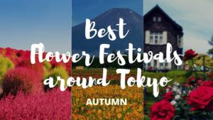 6 Must-Visit Flower Festivals around Tokyo Autumn!