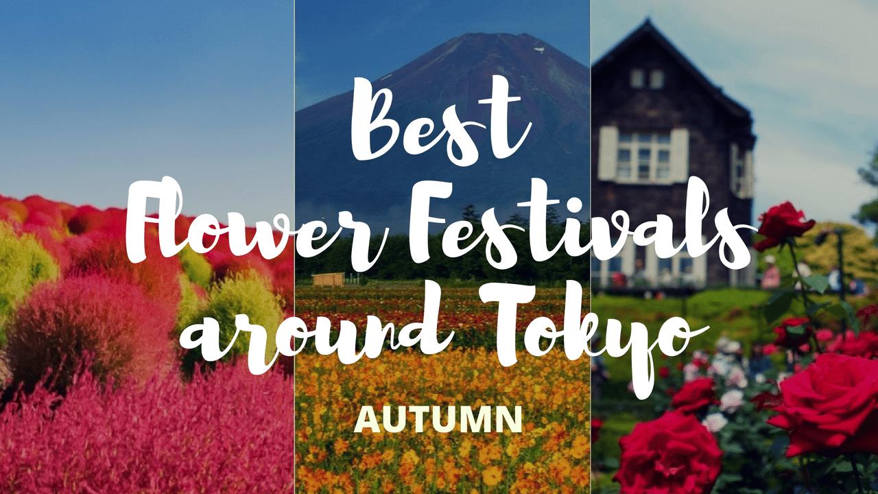 6 Must-Visit Flower Festivals around Tokyo in Autumn!