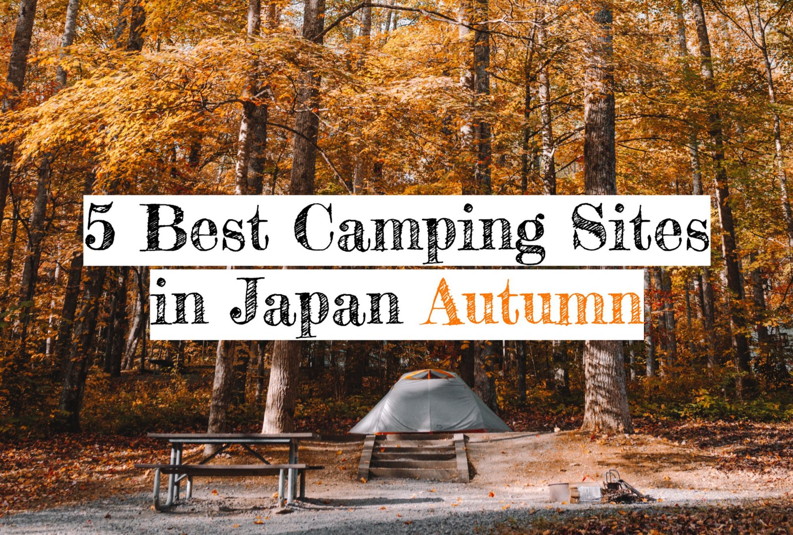 5 Best Camping Sites near Tokyo Area with Autumn Leaves Viewing