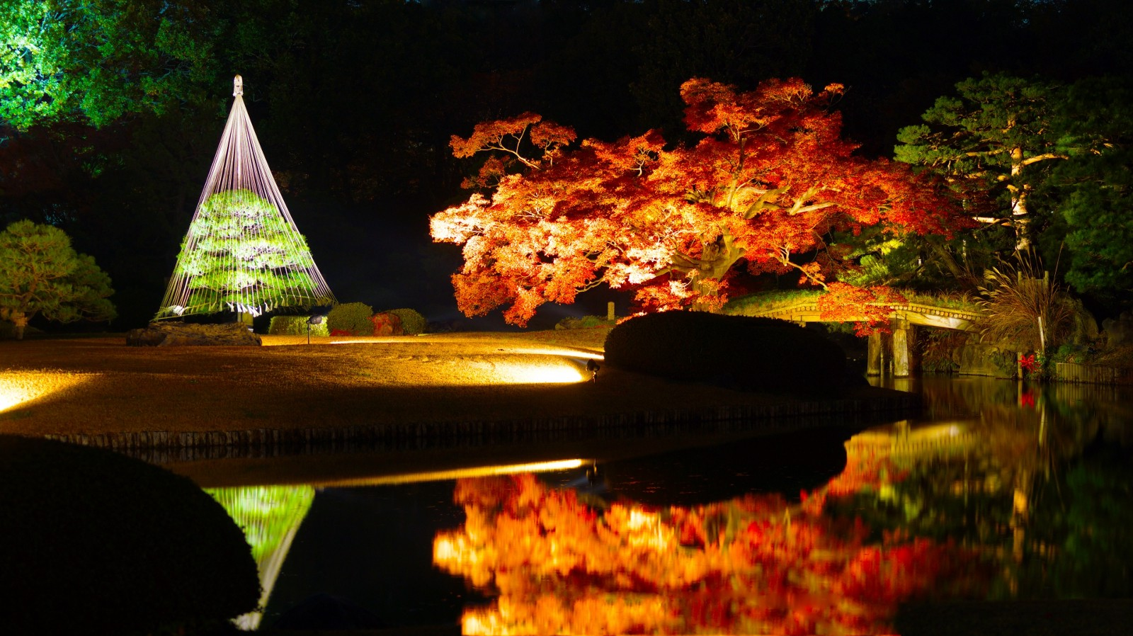 Traditional Japanese garden with autumn leaves and light up
