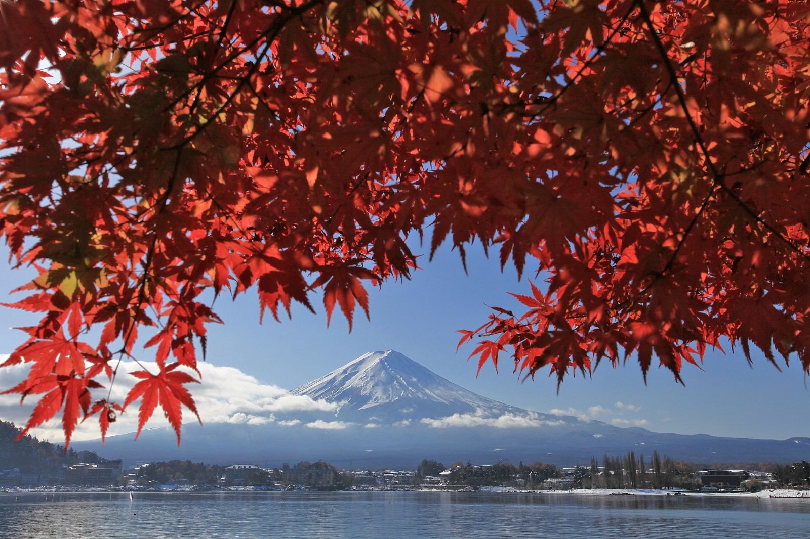 Mt Fuji and red maple leaves at Lake Kawaguchiko