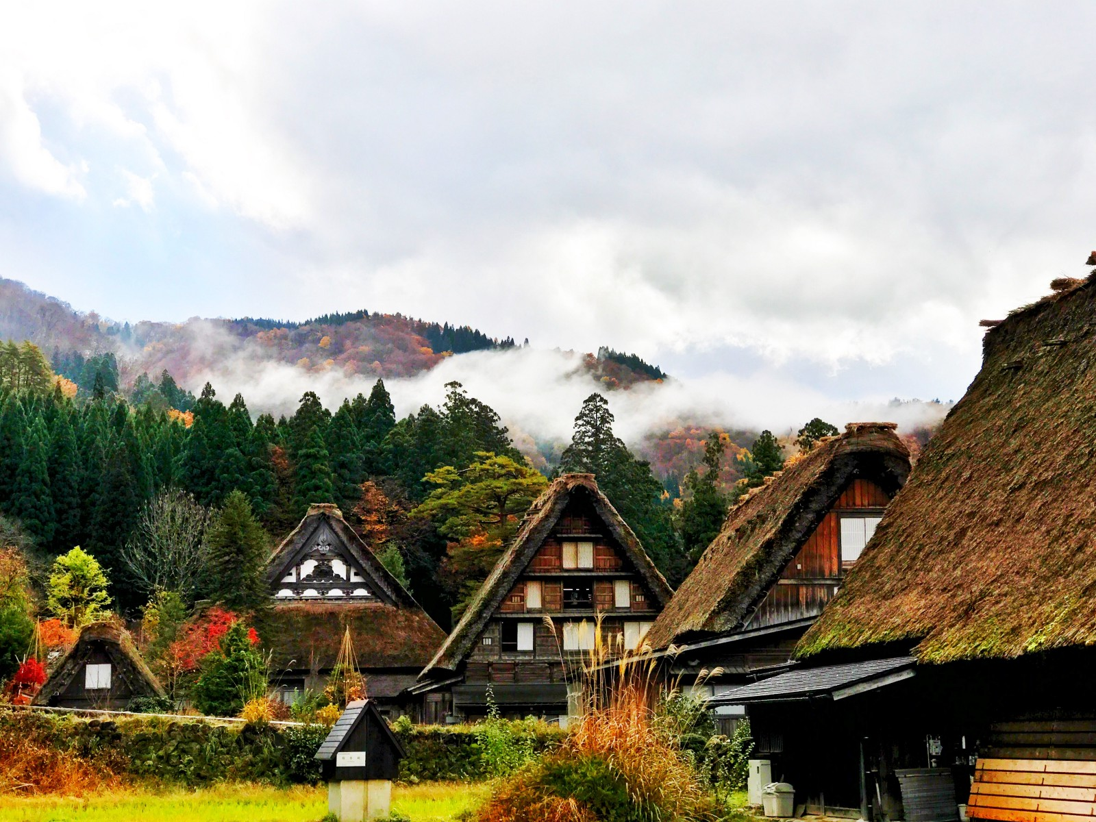 Shirakawago Village in autumn colour