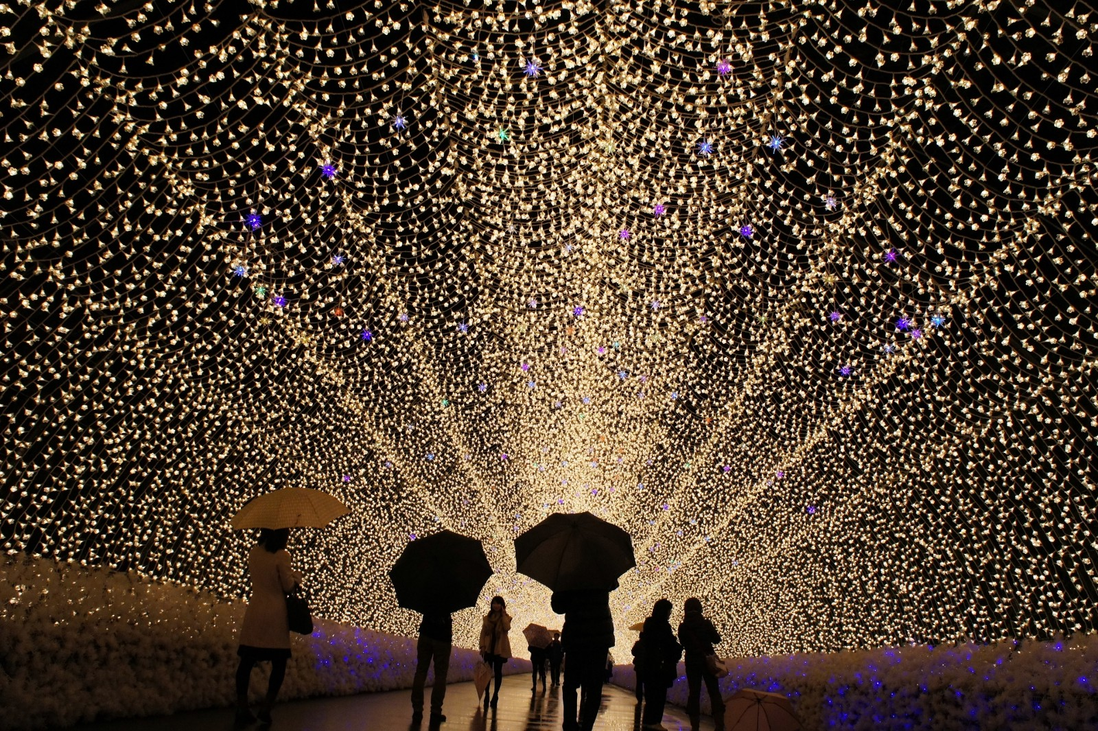 The spectacular tunnel of lights at Nabana no Sato