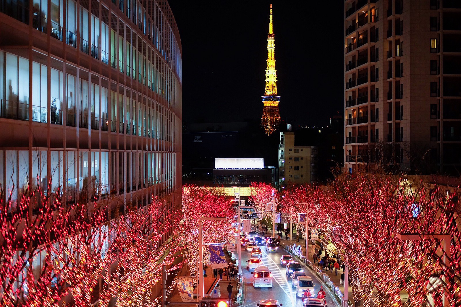 Top 10 Things to Do in Japan in December